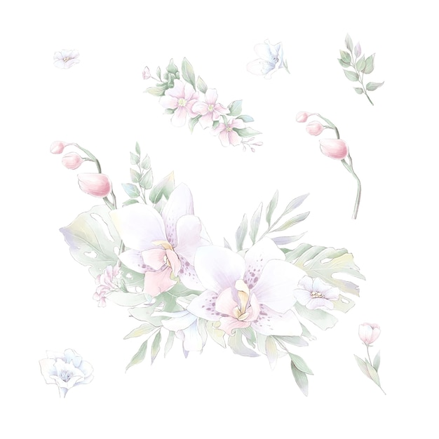 Set of watercolor flowers orchids, watercolor illustration isolated