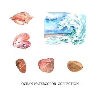 Set of watercolor nautilus, stone, wave
