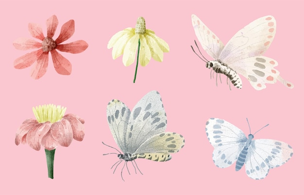 Set of watercolor painting of butterfly and flower