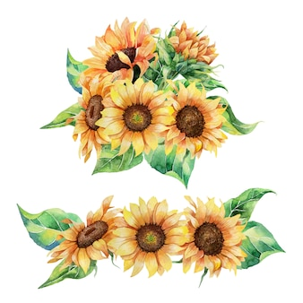 Set of watercolor sunflowers compositions