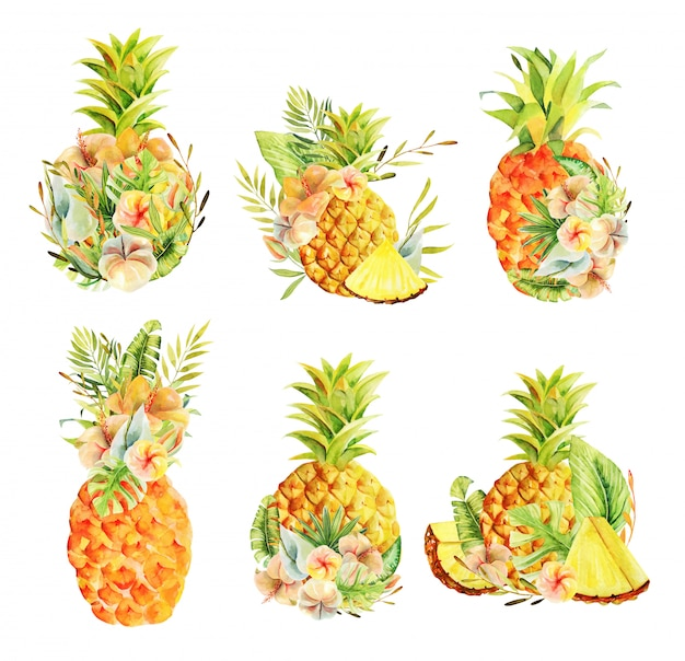 Set of watercolor whole pineapple and sliced, exotic flowers and tropical leaves
