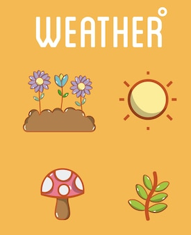 Set of weather icons collection
