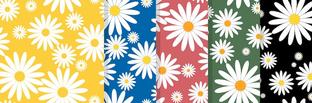Set of white daisies seamless. daisy in doodle style.