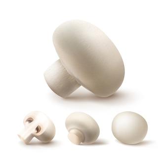 Set of whole and sliced half white mushrooms