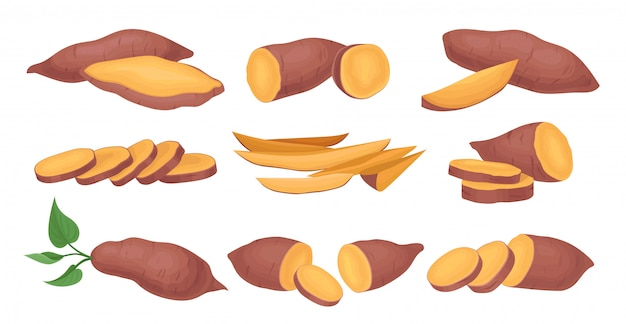 Set of whole and sliced sweet potatoes. ripe and tasty vegetable. natural and healthy food. raw batat