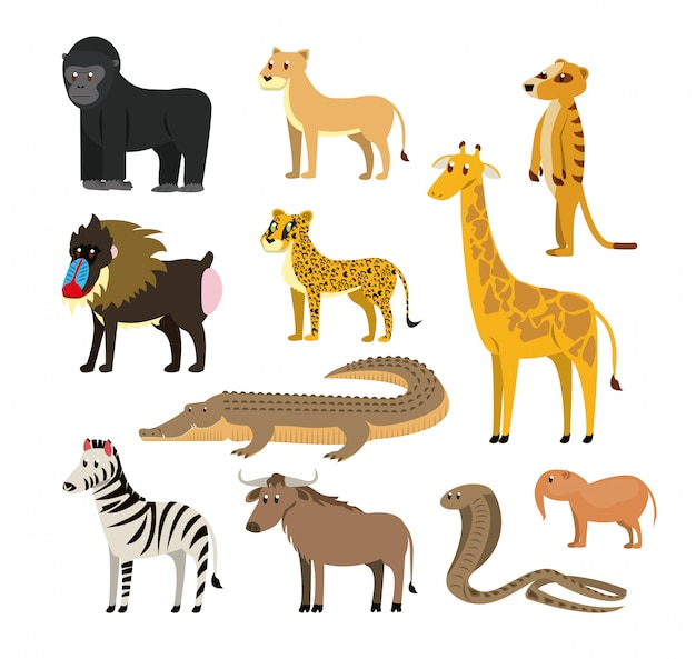 Set of wild african animals