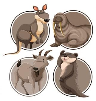Set of wild animal on sticker template