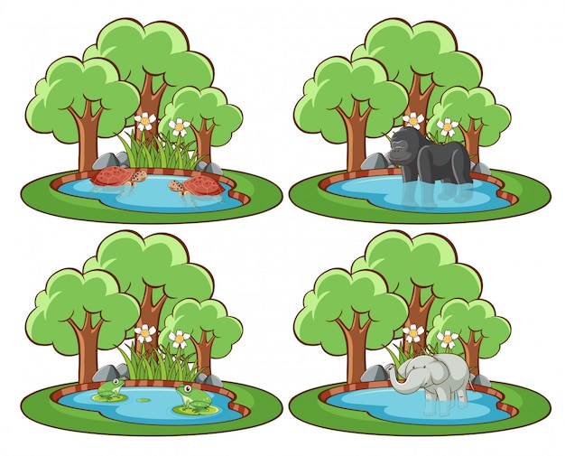 Set of wild animals in the park with pond and tree