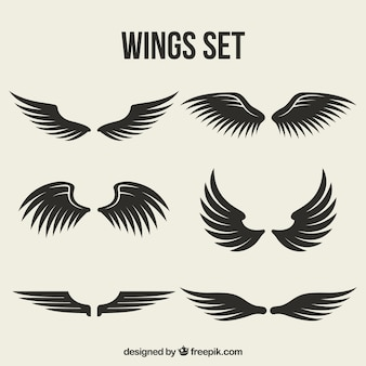 Set of wings with different designs