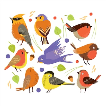 Набор с птицами и элементами лесных растений. осеннее время Бесплатные векторы