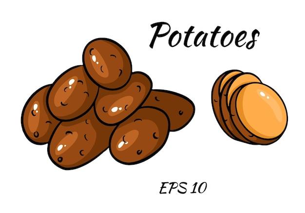 흰색 배경에 고립 된 감자의 다채로운 이미지로 설정합니다. 만화 스타일.