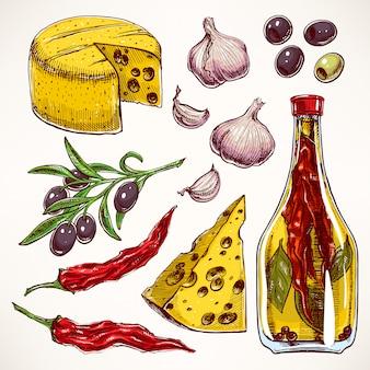 カラフルなスパイス、チーズ、野菜をセットします。ニンニク、オリーブ、唐辛子。手描きイラスト