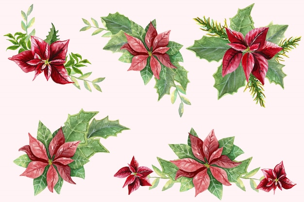 Set with different buttonholes from poinsettia and green leaves