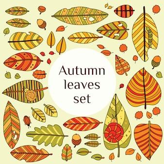 Подать с листьями. осенний лист фон