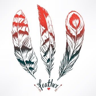 Set with three beautiful feathers