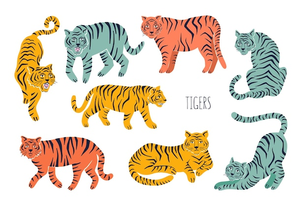Set with tigers in different poses hand drawn vector illustration