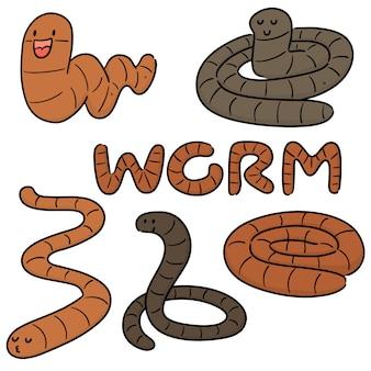 Set of worm