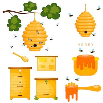 Set of yellow objects beekeeper