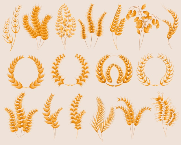 Set of yellow wheat ears icons