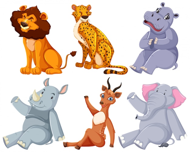 Set of zoo animal sitting