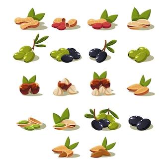 Оливки и орехи, иллюстрация современный дизайн set