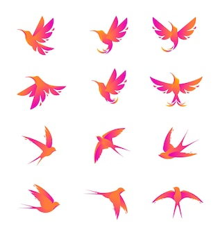 Sets of modern silhouette humming bird and swallow