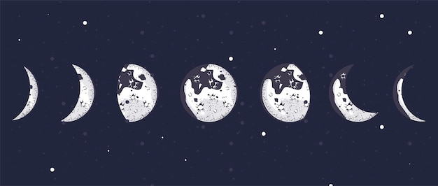 Семь фаз луны Premium векторы