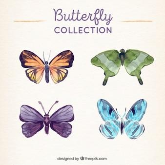 수채화 스타일의 여러 나비
