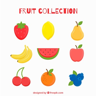 Several delicious fruits in flat design