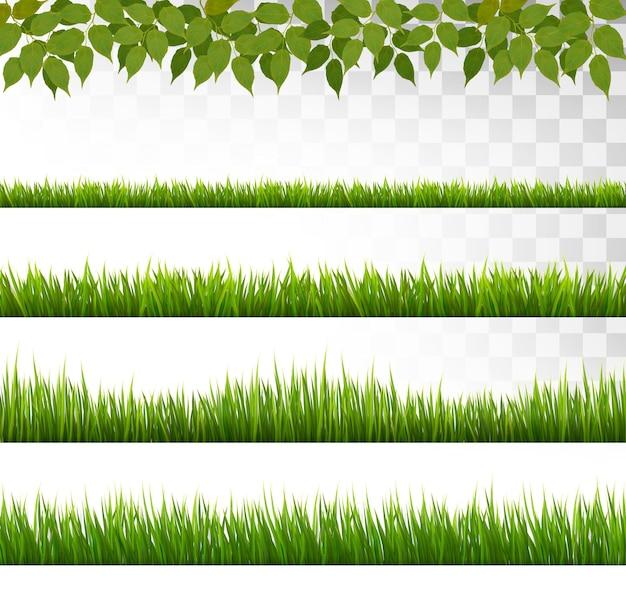 いくつかの草の境界。ベクター。