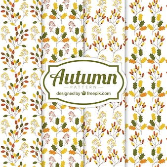 Several patterns with autumn leaves