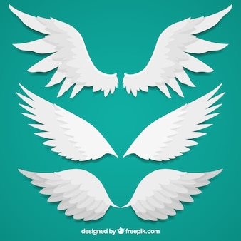 Several wings in flat design