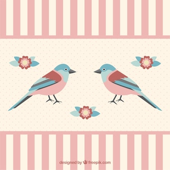 Shabby chic bird background