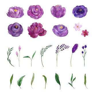 보라색 꽃 수채화 컬렉션의 그늘