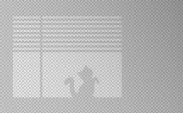 그림자 효과. 창문과 고양이의 그림자와 빛. 벽에 빛의 반사입니다. 디자인을위한 투명한 색조. 삽화.