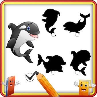 Shadow matching of killer whale cartoon