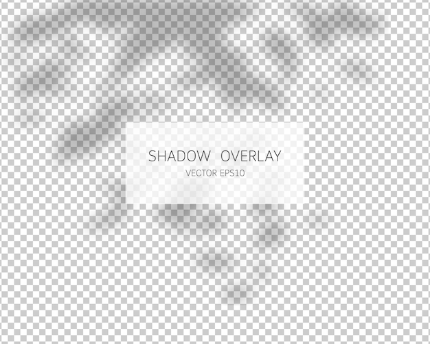 Shadow overlay effect. leaves shadows.   illustration.