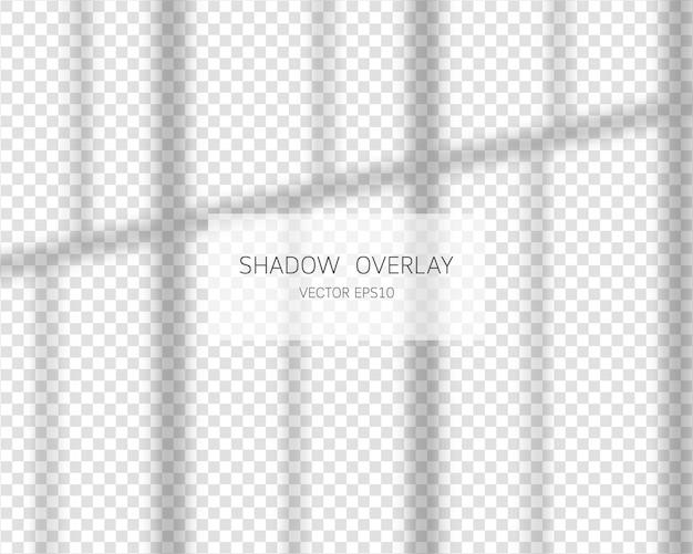 그림자 오버레이 효과. 투명 한 배경에 고립 된 창에서 자연 그림자.