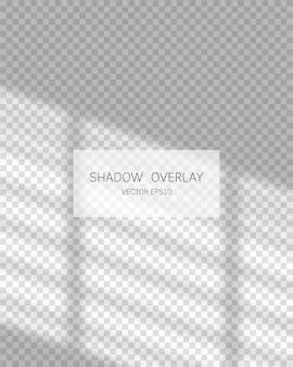그림자 오버레이 효과. 투명 배경에 창에서 자연 그림자입니다. 삽화.