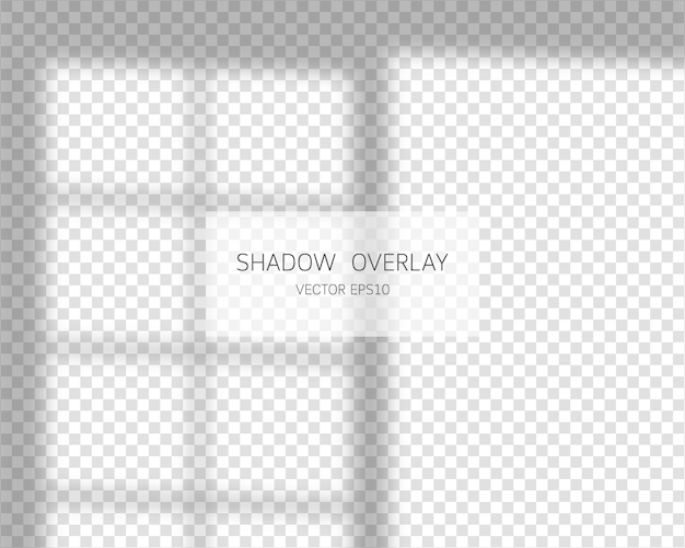 Shadow overlay effect. natural shadows from window  on transparent background.  illustration.