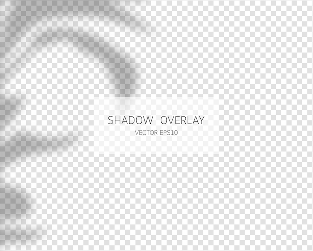 그림자 오버레이 효과. 투명 한 배경에 고립 된 자연 그림자 삽화.