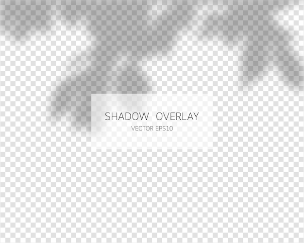 Shadow overlay effect. natural shadows isolated on transparent background.   illustration.