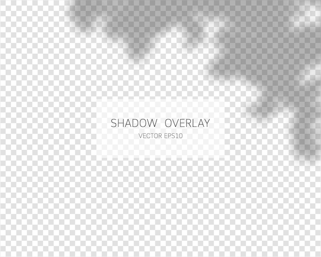 Shadow overlay effect natural shadows isolated on transparent background vector illustration