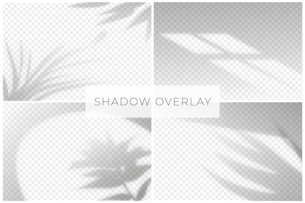 Shadow overlay effect with transparent background