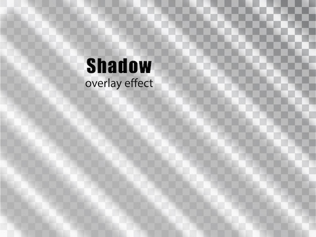 Shadow overlay transparent effect. light and shadow realistic grey decorative background. shadow and light from the window. transparent shadow overlay effect and natural lightning