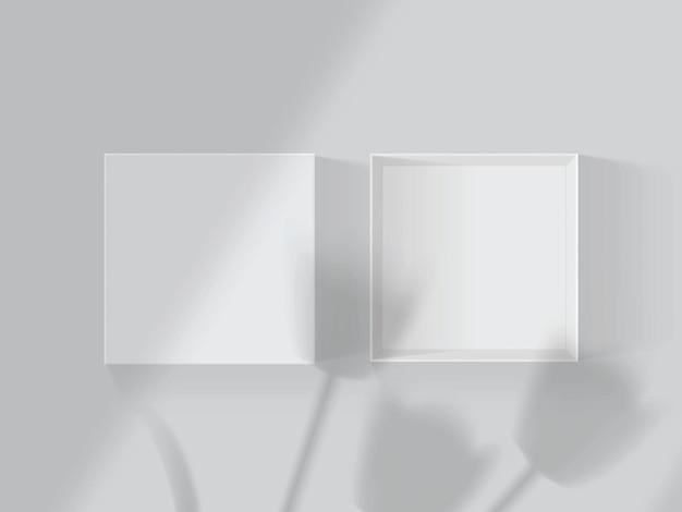 Тени от тюльпанов и окон на белом открытом ящике