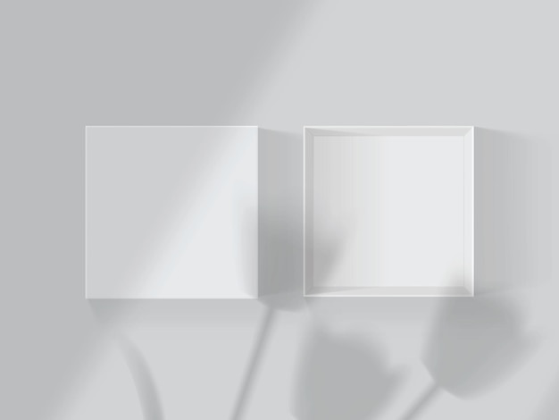 Shadows from tulips and windows on a white open box
