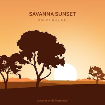 サバンナ影の森林景観
