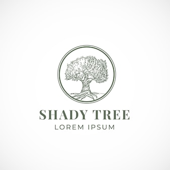 Shady tree abstract  sign, symbol or logo template.