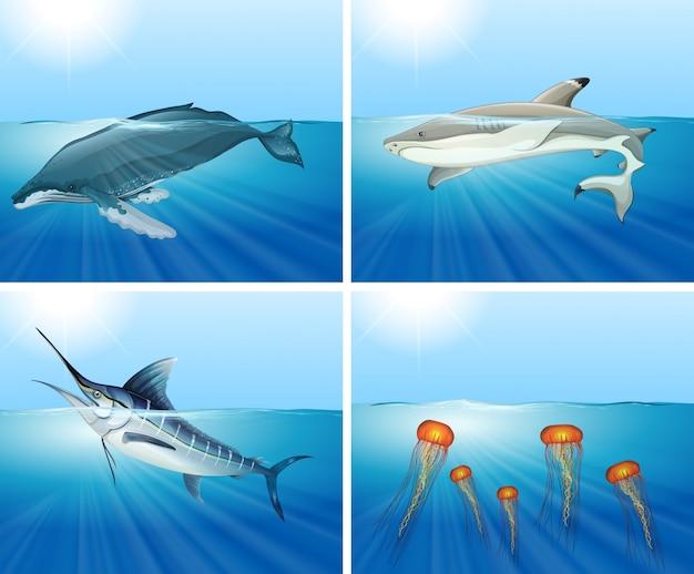 サメや他の海の動物の海のイラスト